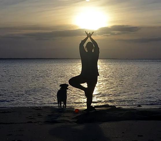 Yoga au féminin